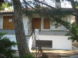 Baia Domizia Nord - Villa in Vendita - 37326530